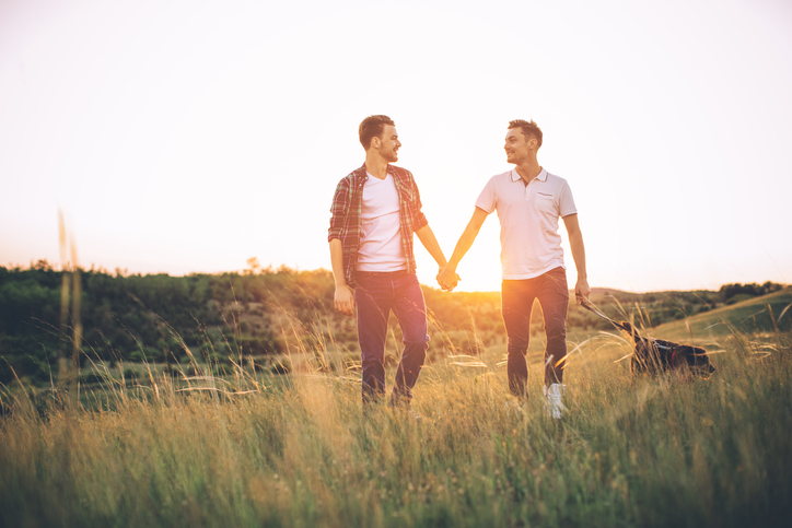 Who wears the trousers? : egalitarianism in gay couples - Vida